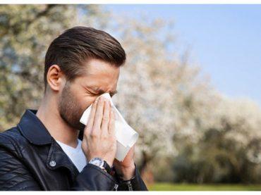 Bahar alerjisine hazırlanın